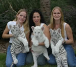 3 Young white tigers with the Girls